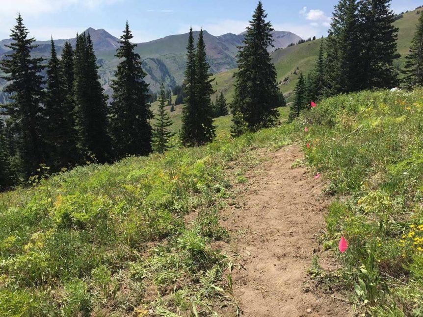 403 Trail Build July 28, 2018